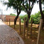 Limpeza e revitalização de Área de Preservação Permanente no Jardim Flamboyant